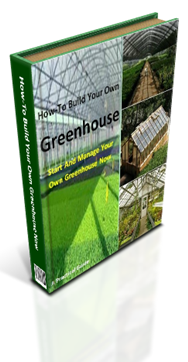 build a green house guide