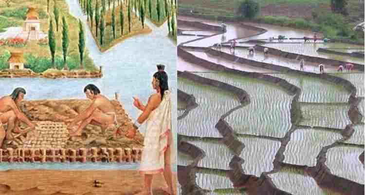 aquaponics history from Egypt to china